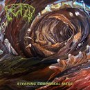 Fetid - Steeping Corporeal Mess (12 LP)